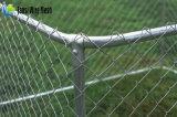 網の実行セクションが付いている5つの犬の犬小屋の鉄の鉄条網の安いブロック