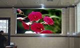 Grand affichage vidéo du casino DEL de P6mm annonçant l'écran de public de signe