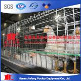 Camada de frango de explorações de aves de gaiola Battary gaiolas para venda na Argélia