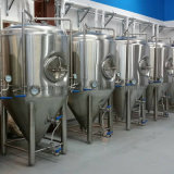 600L Advanced Home Brewing Equipo