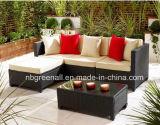 Insieme di vimini esterno/del patio/giardino/rattan mobilia del rattan del sofà