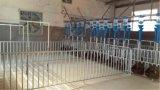 Оборудование для животноводства Pig фермы сглаживание Большие ограждения столбцы роста ящик бар Pigsty Pig пера