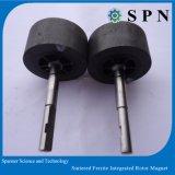 Magneto de ferrite permanentes / Cerâmica/Rotor Motor integrado de injeção de ferrite