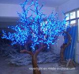De Kerstboom van de openlucht LEIDENE Bloesem van de Kers steekt Decoratie aan