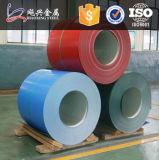 PPGI PPGLColor Coated Galvanized Steel Coil