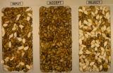 [فولّ كلور] [5000بإكس] نظامة لون [ستر] لأنّ بذرة