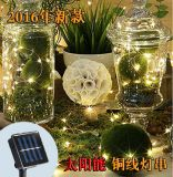 10m 100 LED Solar LED Waterproof Copper Wire String Lights