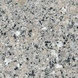 La fabbrica direttamente offre le mattonelle della costruzione del granito