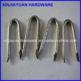Galvano galvanisierte Zaun-Heftklammer-Nagel des Metallu mit geschnittenem Punkt