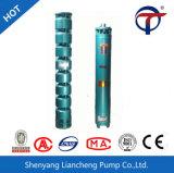 Qjシリーズ鋳鉄ボディ深い井戸の浸水許容の水ポンプ