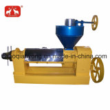 На заводе семян конопли маслоотжимной пресс 6yl-120