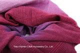 Elegante Verpackung weiche gesponnene Kint Schal-Dame Pashmina Shawl