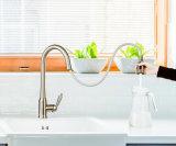 La tête de pulvérisation à trois fonctions tirez vers le bas robinet d'eau de robinet de cuisine