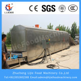 Macchina multifunzionale industriale di /Dryer/Drying del disidratatore dell'ortaggio da frutto dell'aria calda