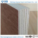 Venta caliente Bintangor enfrentan los álamos Core para la decoración y muebles de madera contrachapada