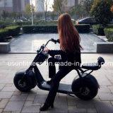 Transport-elektrisches Fahrrad und Teil