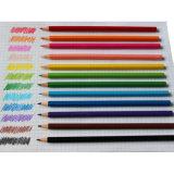 24 Boîte de crayons de couleur dans l'étain, artiste Crayons de couleur