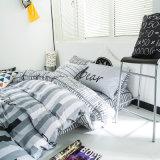 يصمّم سعر جيّدة و100 قطن غرفة نوم مجموعة [بدّينغ]