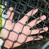 Treillis métallique de moutons/moutons galvanisés clôturant/frontière de sécurité maillon de chaîne