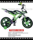 Batteriebetriebenes Bike 250W Kids Mini Motorcycles