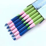 La bella matita dell'imballaggio scherza i pastelli