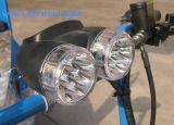 Het Pedaal van de bevordering en Elektrische Riksja Pedicab