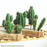 DIY Дом Декор Искусственные растения Prickly Pear Succule искусственного кактус
