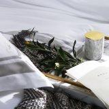 Casa de alta qualidade tamanho King Têxteis 100% Roupa de cama de algodão acetinado (CCI771)
