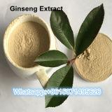 99% reiner natürlicher Ginseng-Auszug für Gesundheitspflege 90045-38-8