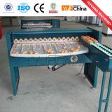Classement des oeufs automatique pour la vente de la machine