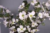 人工的な白い花、人工的な水気が多い花、擬似セイヨウカリンの花
