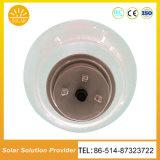 熱い販売18W太陽モモライトLED太陽庭ライト