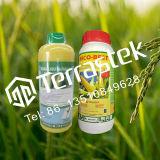 Agrochemisch Herbicide Nicosulfuron