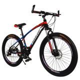 고품질 탄소 산악 자전거 (LY-A-13)