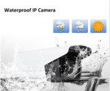 Wdm 2.0MP Starlight Network Câmera IP de segurança diurna e noturna