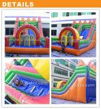 Rainbow gonflables couleur faites glisser l'eau gonflable diapositive avec arch pour amusement park