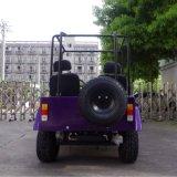 حارّ يبيع غاز مصغّرة [جيب/وتف/دون] عربة صغيرة مع [س]