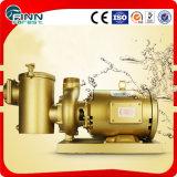 プールのAnti-Corrosion高圧銅の水ポンプ