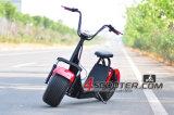 il motorino elettrico del motore senza spazzola del mozzo 1500W per gli adulti installa la batteria di litio di 12ah/15ah/18ah 60V