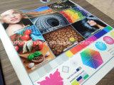 Impresora de impresión a color digital de la máquina UV