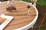 All Weathers Polywood for Outdoor Garden Stacking cadeiras de jantar de metal no Patio Bistro Restaurant (TG-1292)