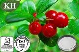 Arbutin natural un 20% de extracto de la hoja Bearberry