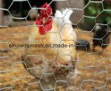 Плетение цыплятины мелкоячеистой сетки Sailin