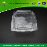 Контейнер упаковки Clamshell Hoagie ясный прикрепленный на петлях