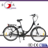 La bici eléctrica parte el motor del eje para la bicicleta del crucero