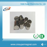 Magneet van het Neodymium NdFeB van de douane N35-N52 de Super Sterke Permanente
