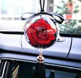 A promoção preservou a flor para a decoração do carro