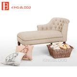Muebles de las sillas de salón de la calesa del jardín de los mediados de siglo