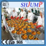 Hochwertige in Essig einlegende Obst- und GemüseProduktions-Maschinerie auf Verkauf