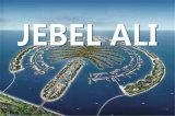 Service de livraison de l'air de Qingdao à Jebel Ali